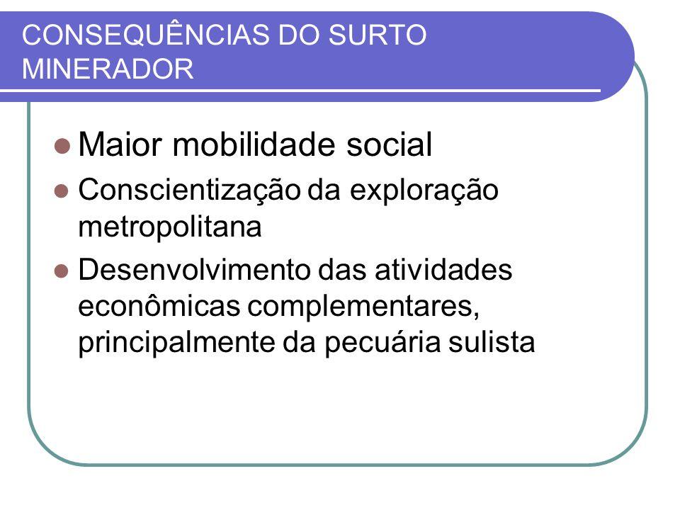 CONSEQUÊNCIAS DO SURTO MINERADOR