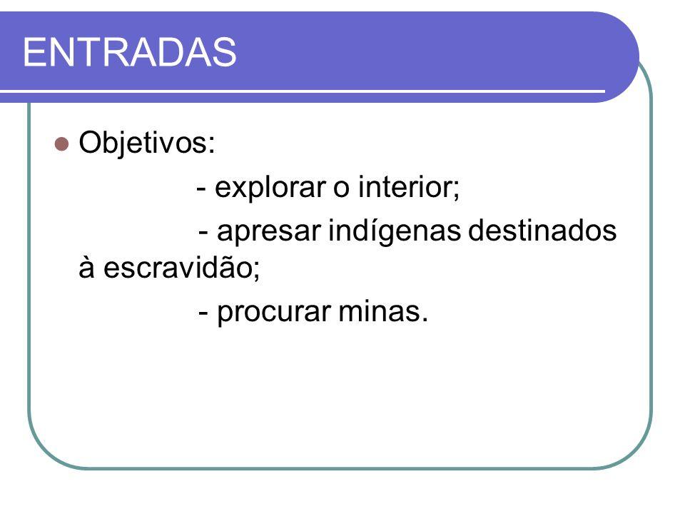 ENTRADAS Objetivos: - explorar o interior;