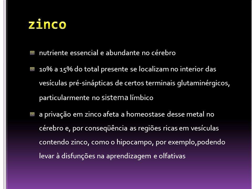 zinco nutriente essencial e abundante no cérebro
