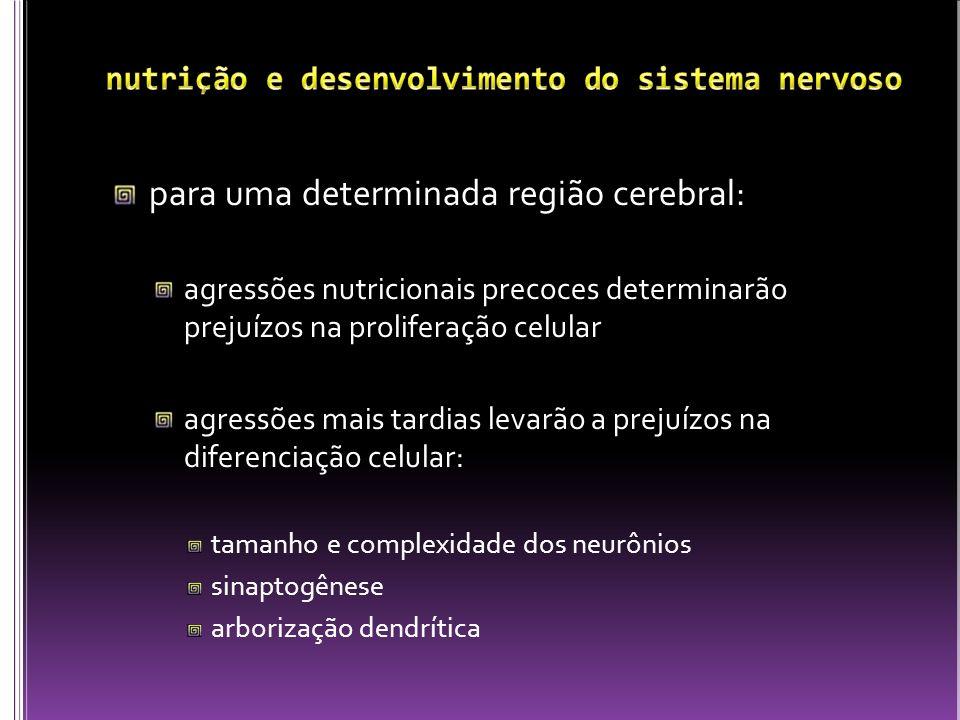 nutrição e desenvolvimento do sistema nervoso