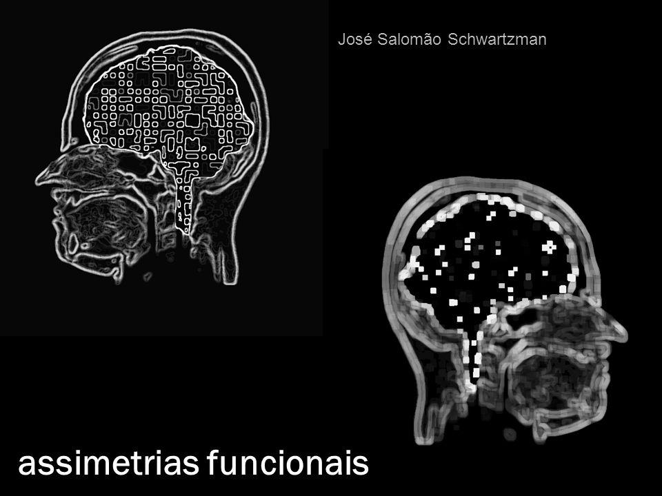 assimetrias funcionais