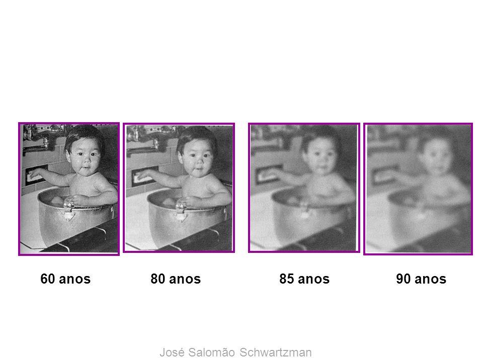 60 anos 80 anos 85 anos 90 anos José Salomão Schwartzman