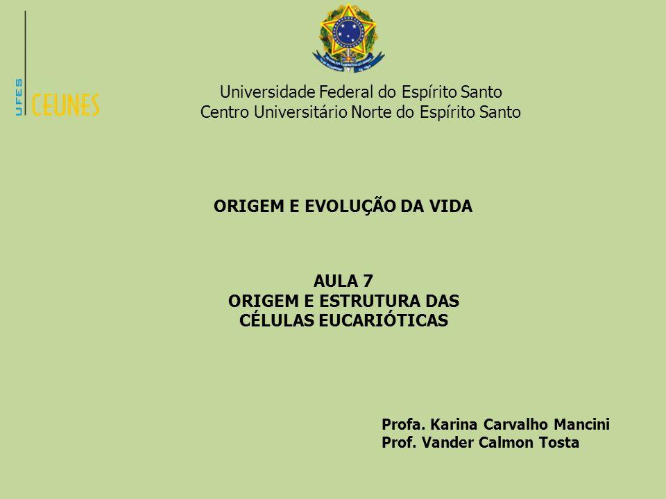 ORIGEM E ESTRUTURA DAS CÉLULAS EUCARIÓTICAS