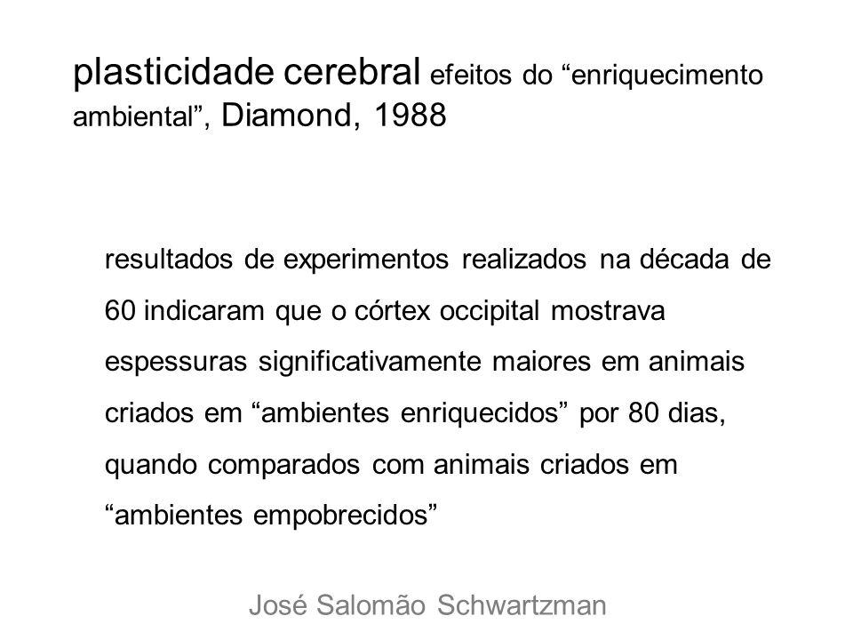 plasticidade cerebral efeitos do enriquecimento ambiental , Diamond, 1988