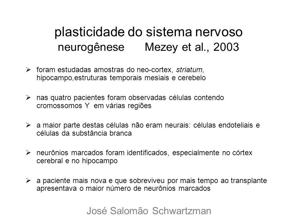 plasticidade do sistema nervoso neurogênese Mezey et al., 2003