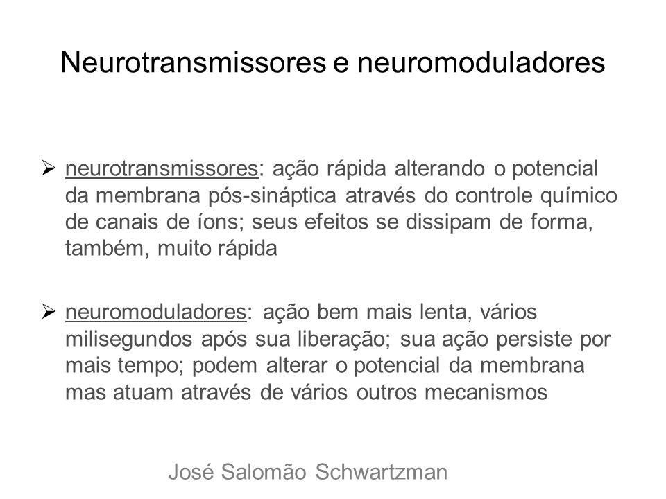 Neurotransmissores e neuromoduladores