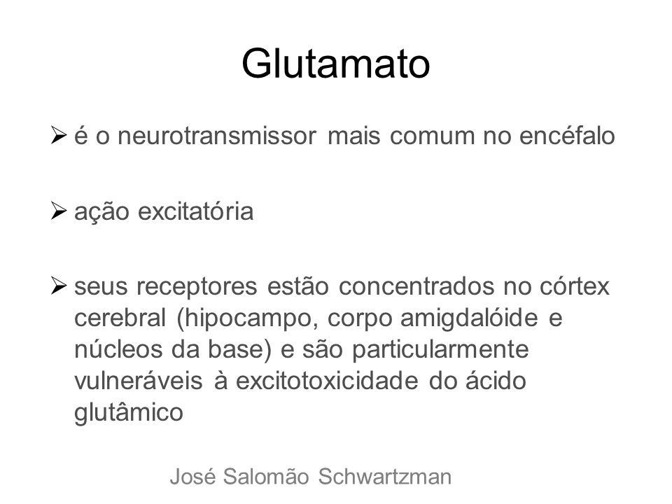 Glutamato é o neurotransmissor mais comum no encéfalo ação excitatória