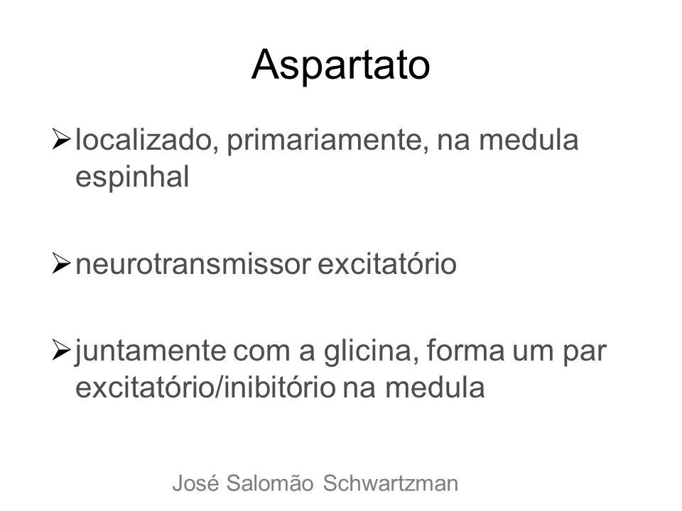 Aspartato localizado, primariamente, na medula espinhal