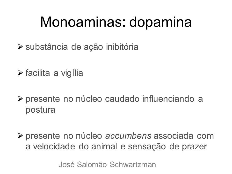 Monoaminas: dopamina substância de ação inibitória facilita a vigília