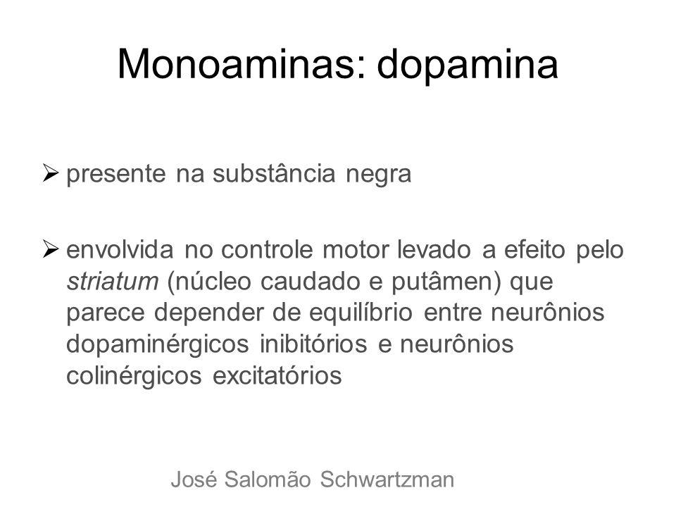 Monoaminas: dopamina presente na substância negra