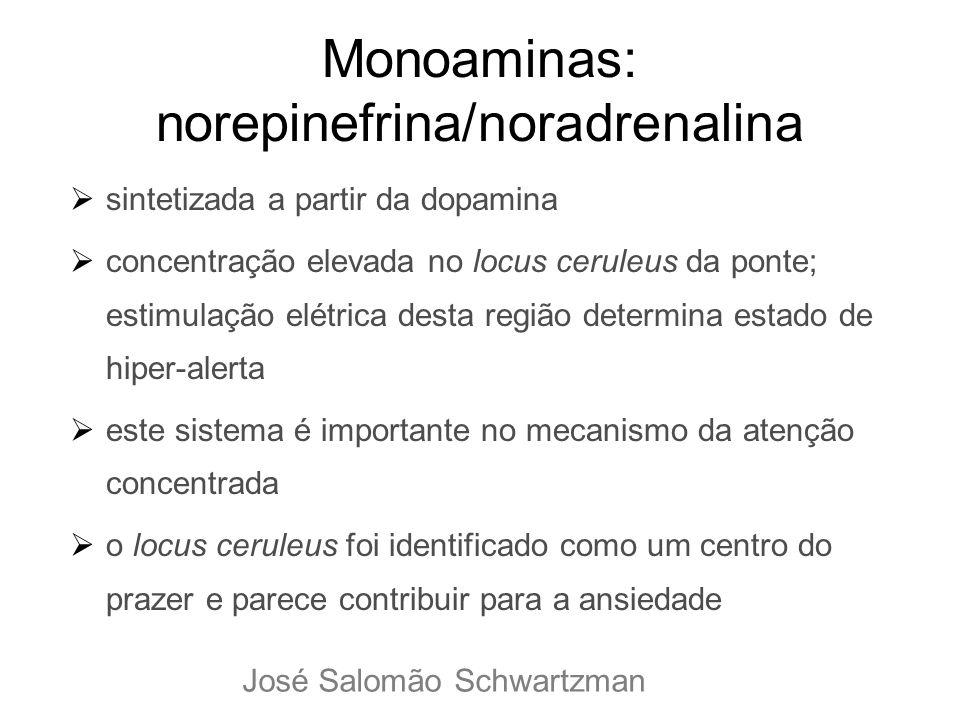 Monoaminas: norepinefrina/noradrenalina