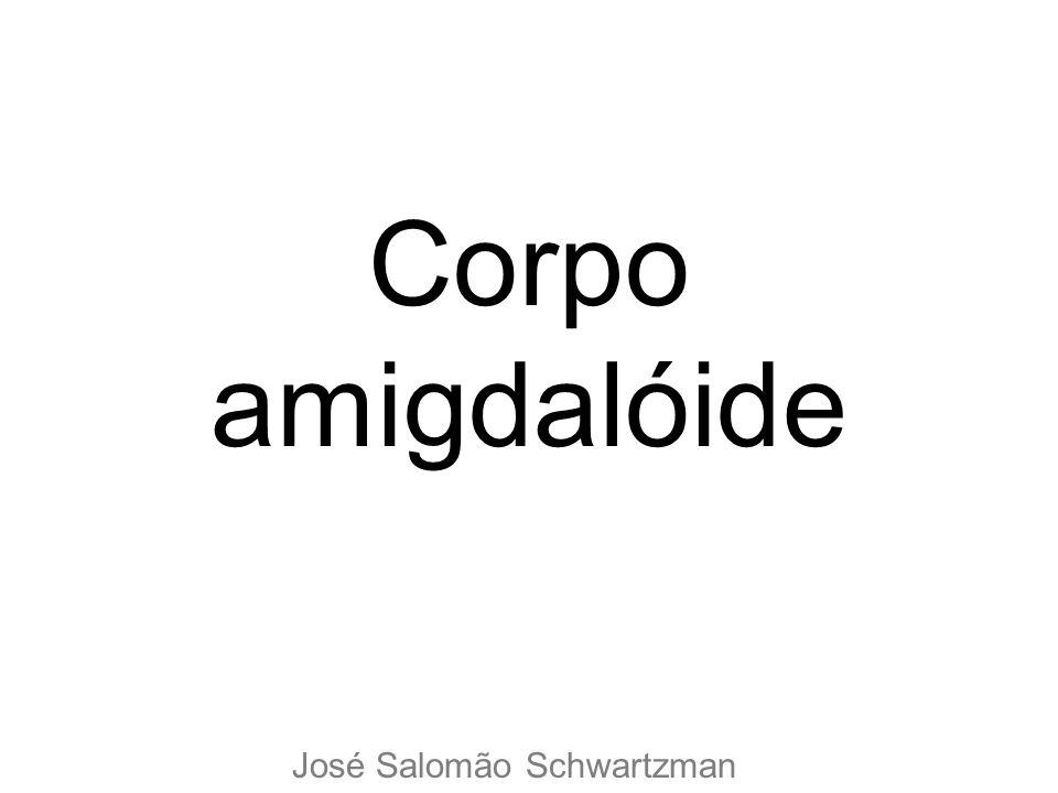 Corpo amigdalóide José Salomão Schwartzman