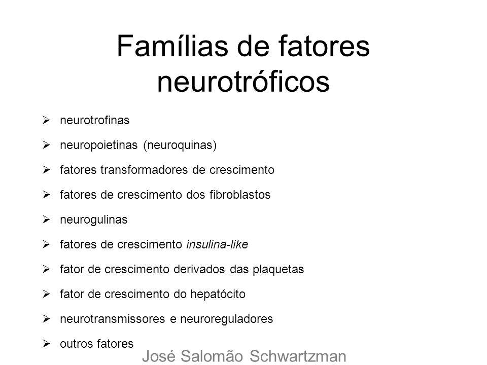 Famílias de fatores neurotróficos