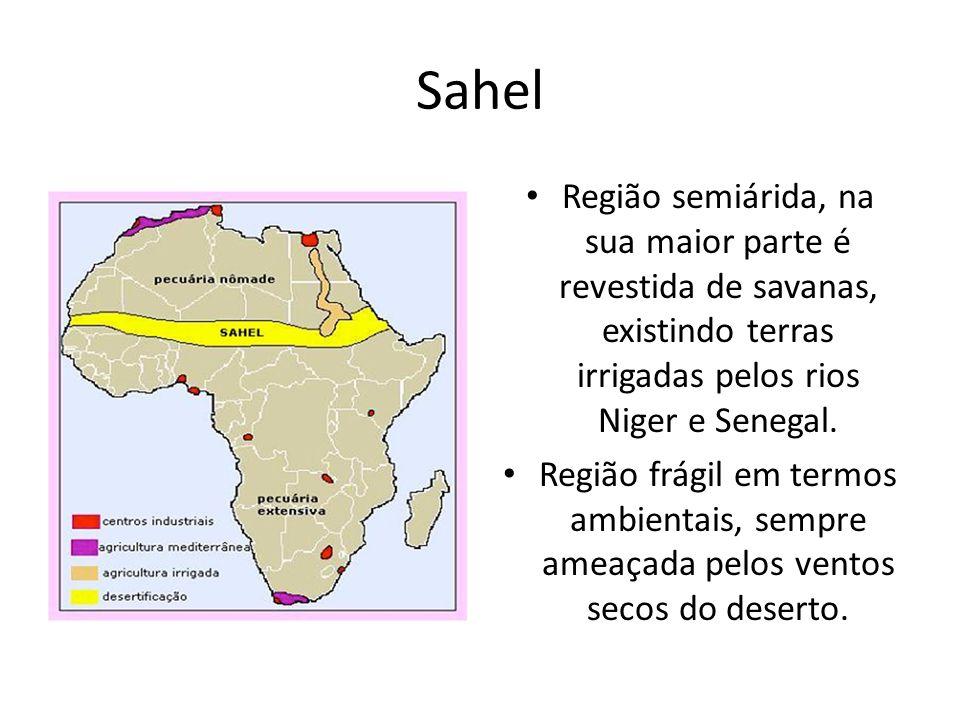 Sahel Região semiárida, na sua maior parte é revestida de savanas, existindo terras irrigadas pelos rios Niger e Senegal.