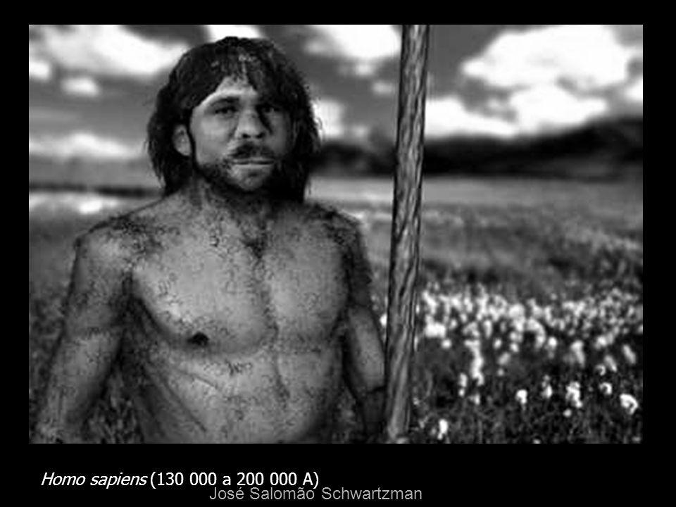 Homo sapiens (130 000 a 200 000 A) José Salomão Schwartzman