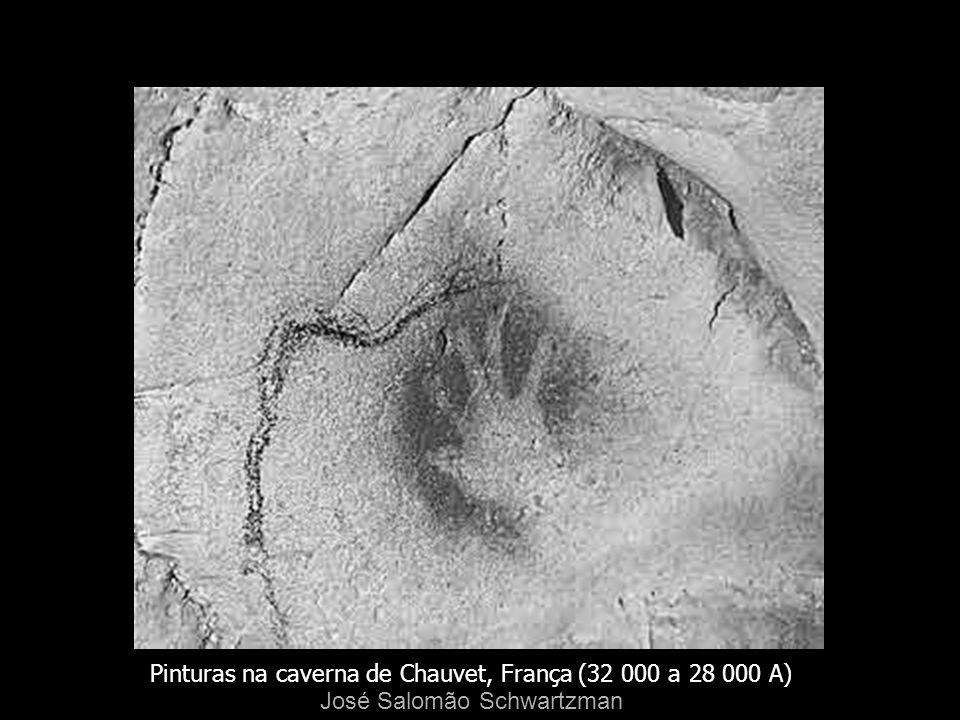 Pinturas na caverna de Chauvet, França (32 000 a 28 000 A)