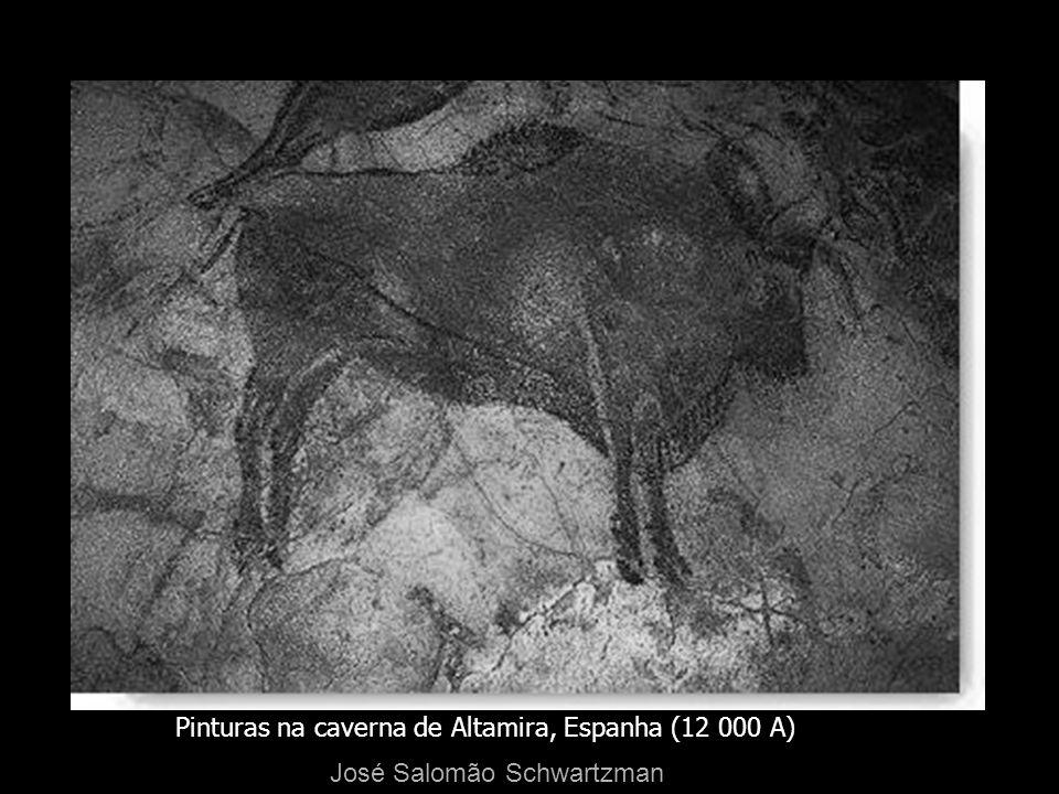 Pinturas na caverna de Altamira, Espanha (12 000 A)