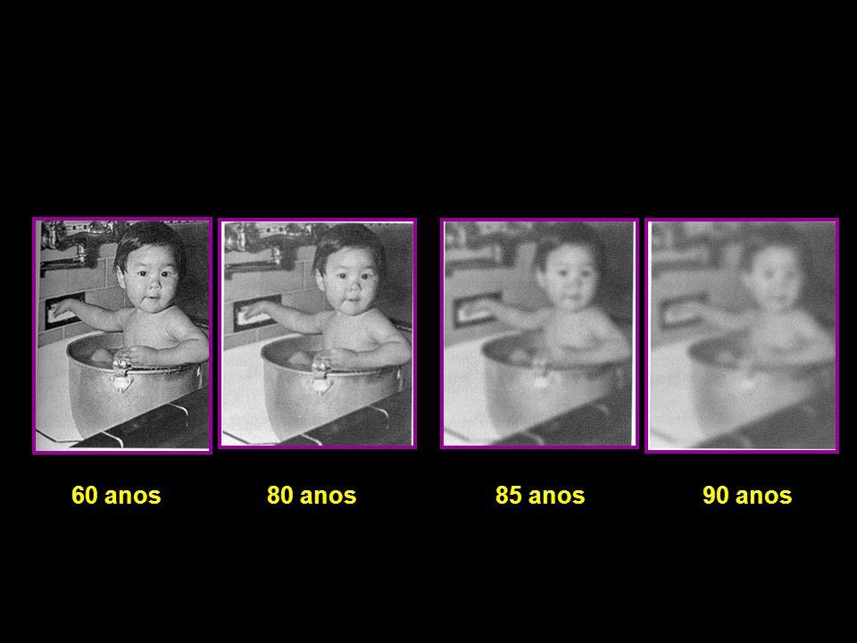 60 anos 80 anos 85 anos 90 anos