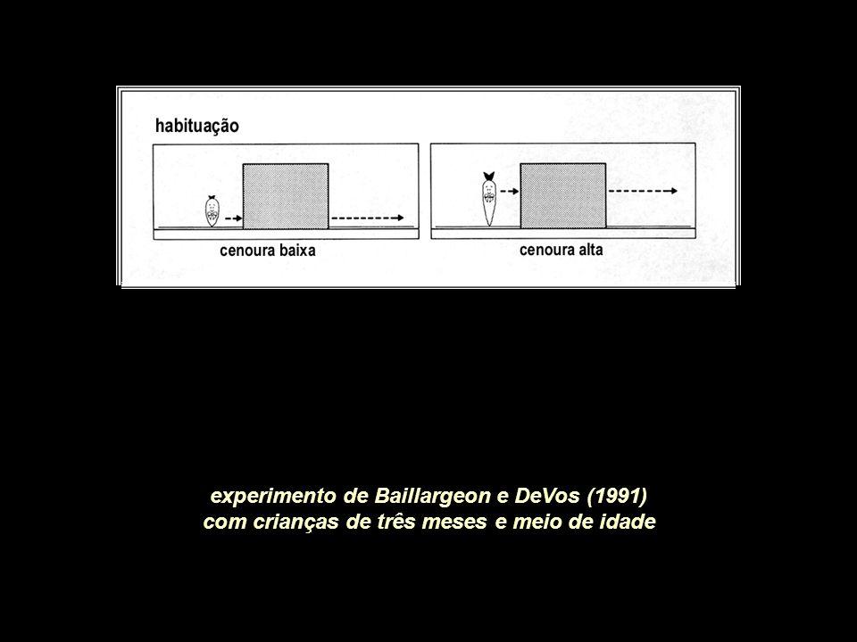 experimento de Baillargeon e DeVos (1991)