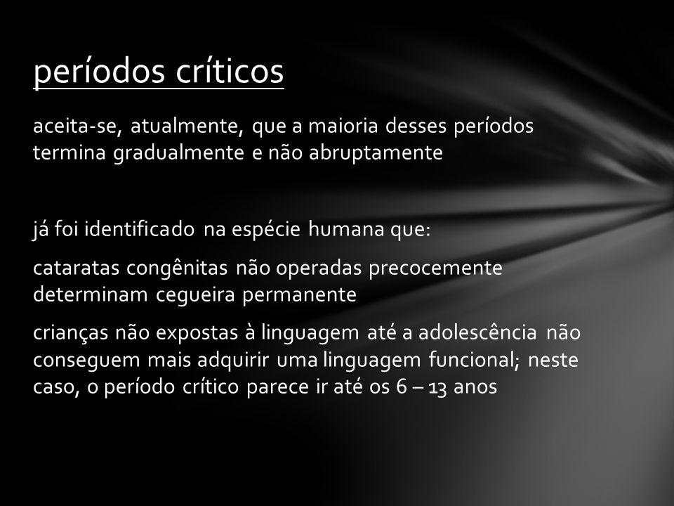 períodos críticos