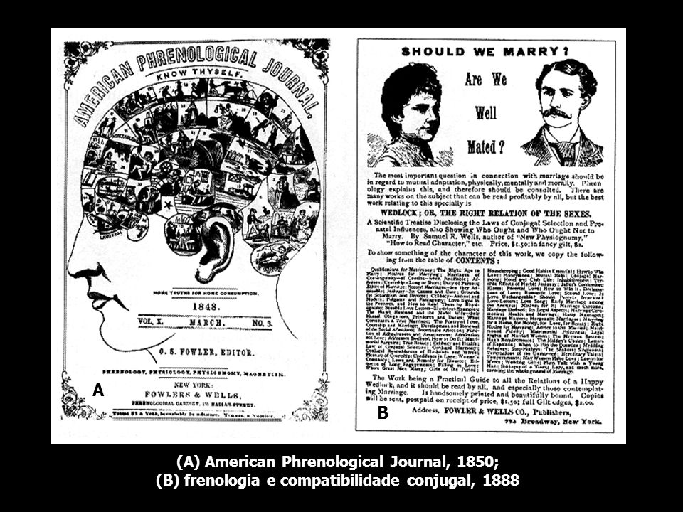 A B (A) American Phrenological Journal, 1850;