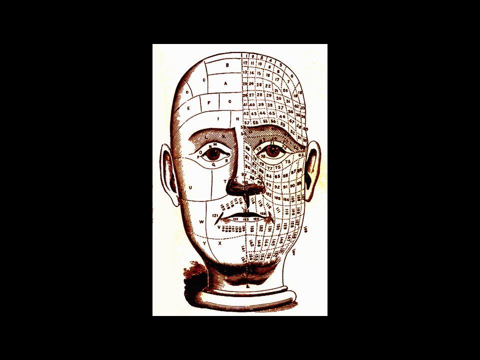 mapa da cabeça e face de autoria de I.W. Redfield (1866)