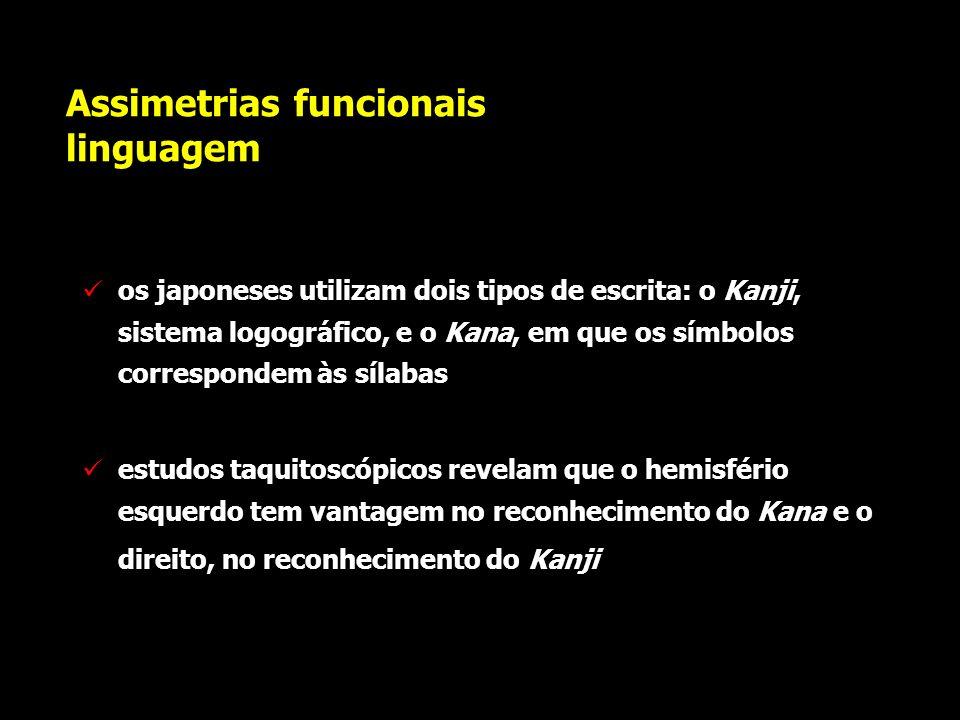 Assimetrias funcionais linguagem