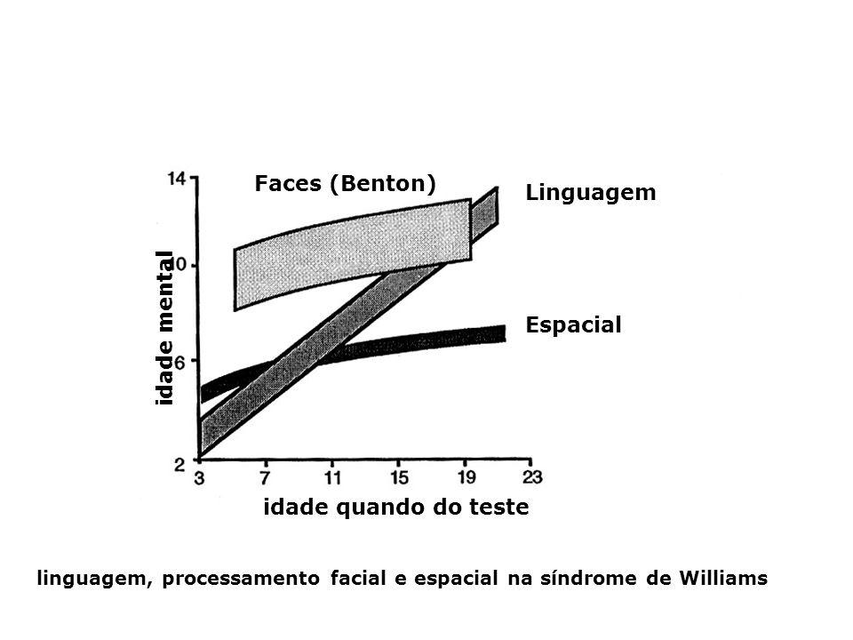 Faces (Benton) Linguagem idade mental Espacial idade quando do teste