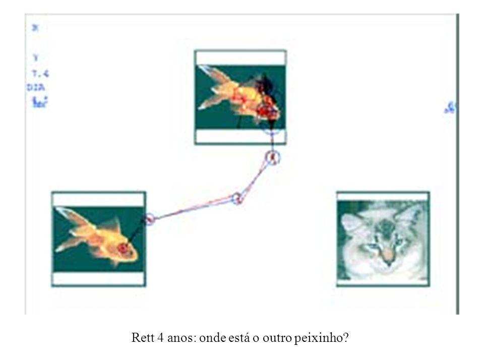 Rett 4 anos: onde está o outro peixinho