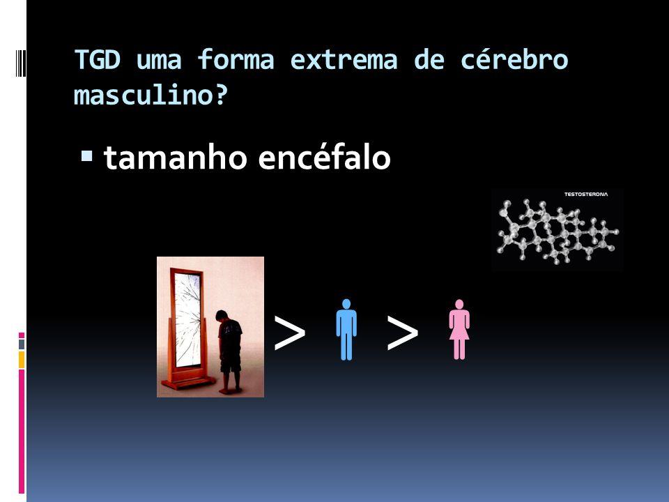 TGD uma forma extrema de cérebro masculino