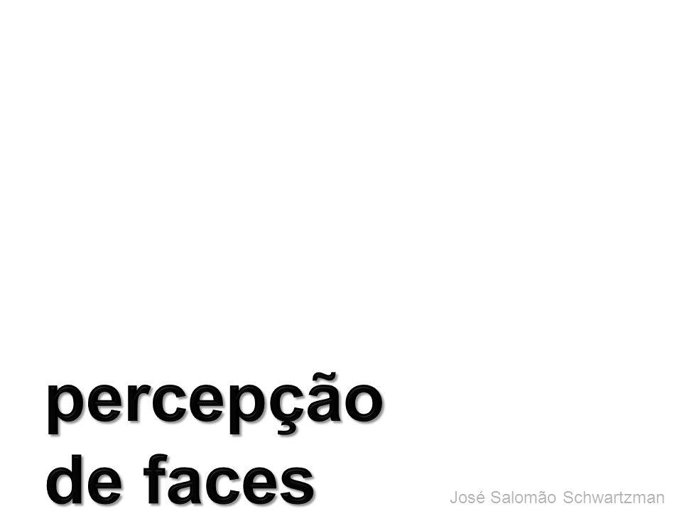 percepção de faces José Salomão Schwartzman