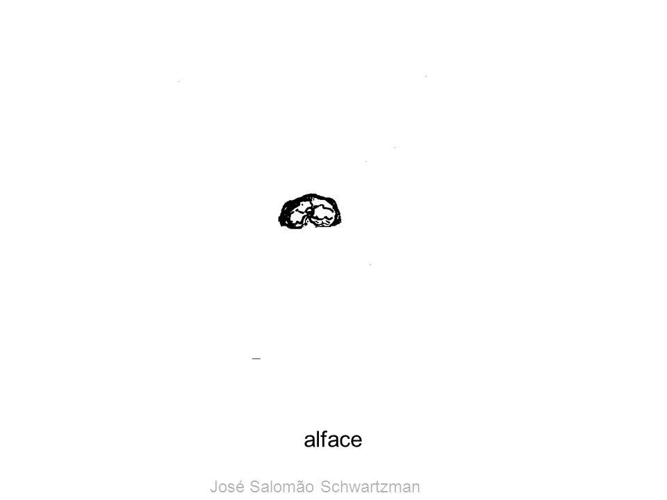 alface José Salomão Schwartzman