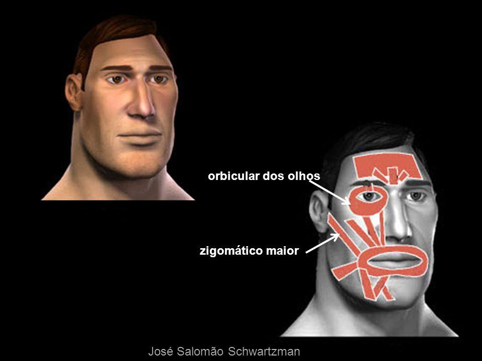 zigomático maior orbicular dos olhos José Salomão Schwartzman