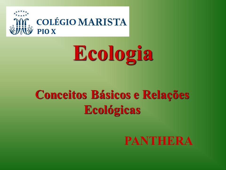 Conceitos Básicos e Relações Ecológicas