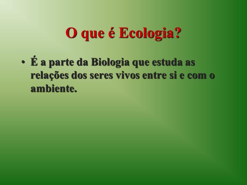 O que é Ecologia.