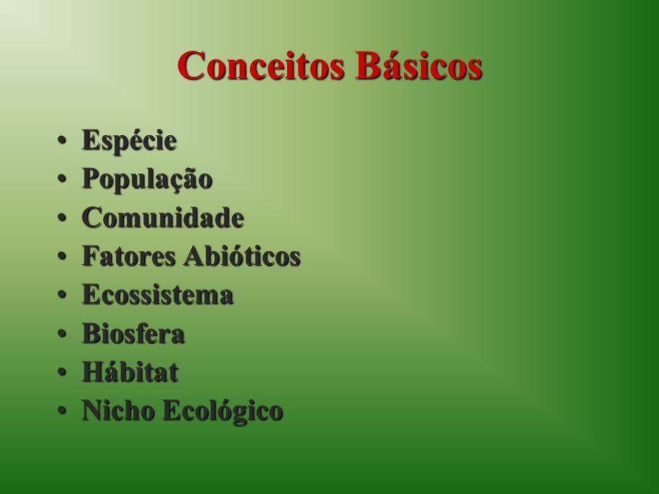 Conceitos Básicos Espécie População Comunidade Fatores Abióticos