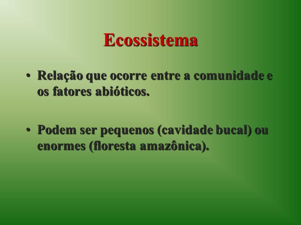 Ecossistema Relação que ocorre entre a comunidade e os fatores abióticos.