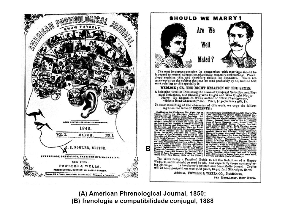 B A (A) American Phrenological Journal, 1850;