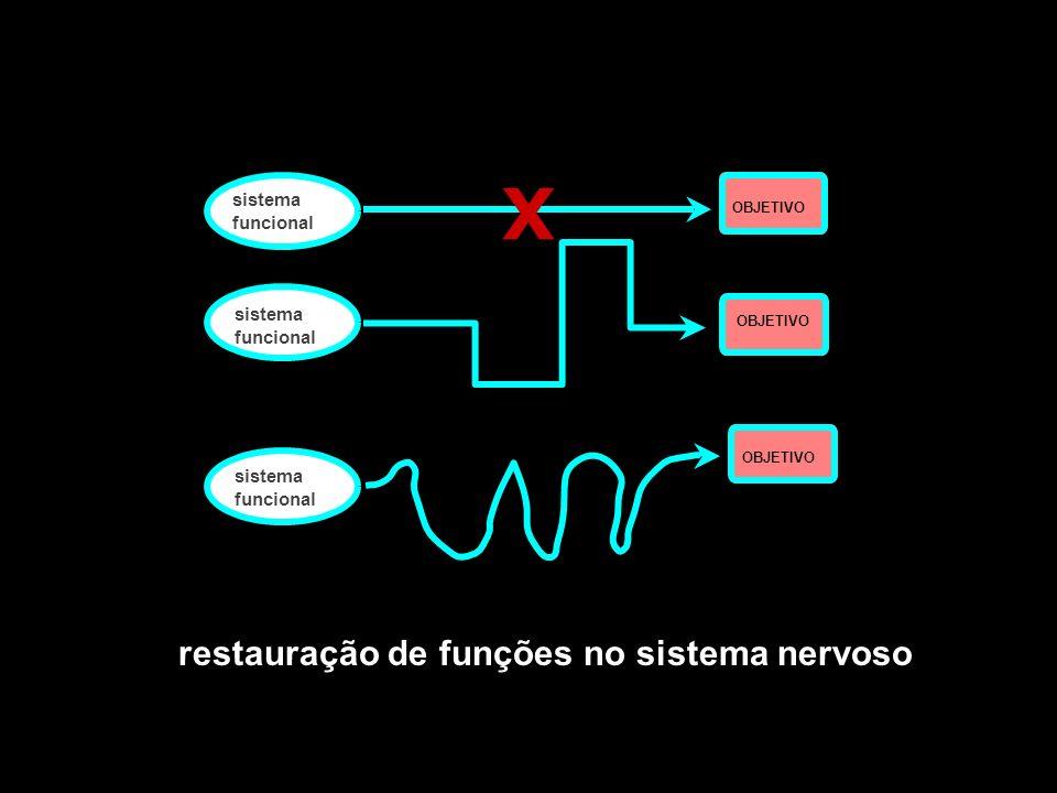 X restauração de funções no sistema nervoso sistema funcional sistema