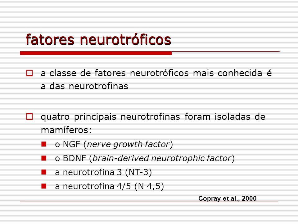 fatores neurotróficos