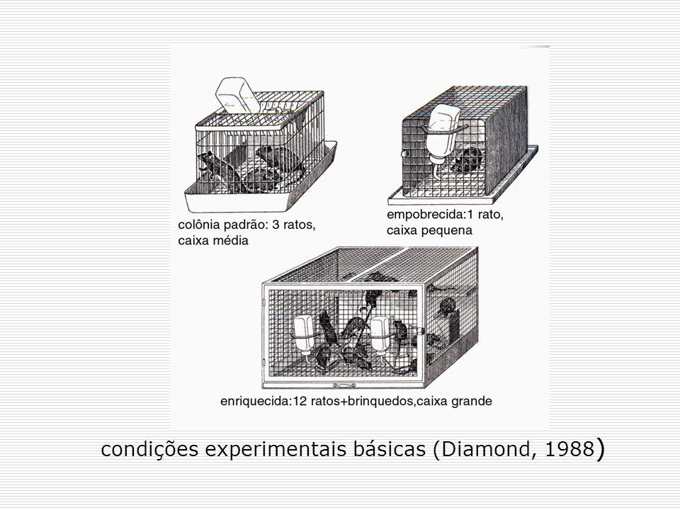 condições experimentais básicas (Diamond, 1988)