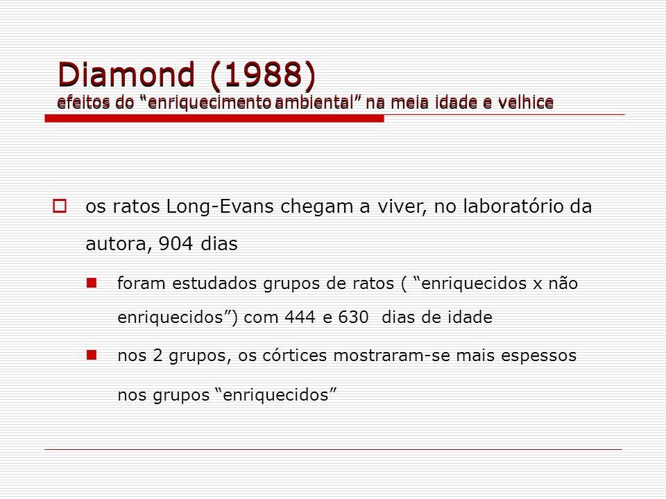 Diamond (1988) efeitos do enriquecimento ambiental na meia idade e velhice