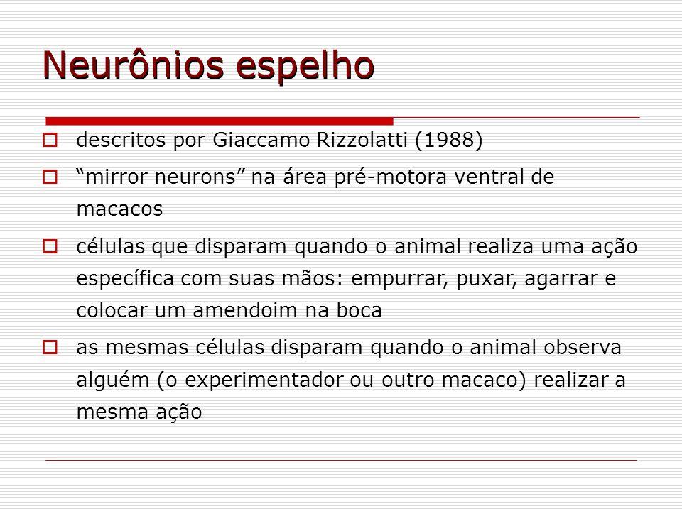 Neurônios espelho descritos por Giaccamo Rizzolatti (1988)