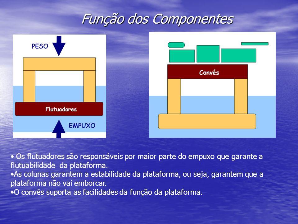 Função dos Componentes