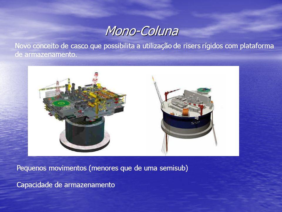 Mono-Coluna Novo conceito de casco que possibilita a utilização de risers rígidos com plataforma de armazenamento.
