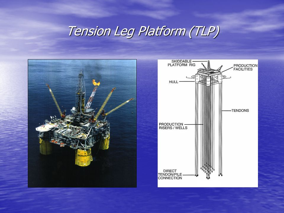 Tension Leg Platform (TLP)