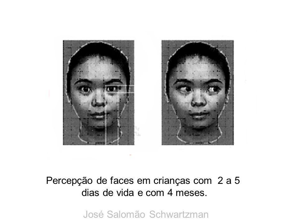 Percepção de faces em crianças com 2 a 5