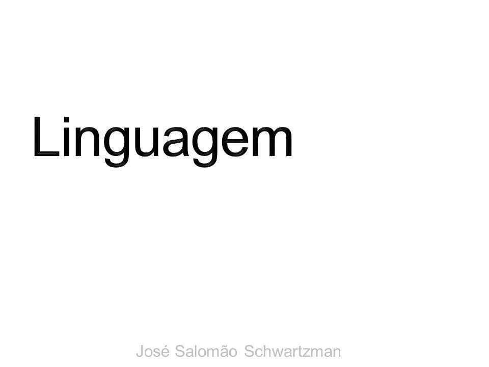 Linguagem José Salomão Schwartzman