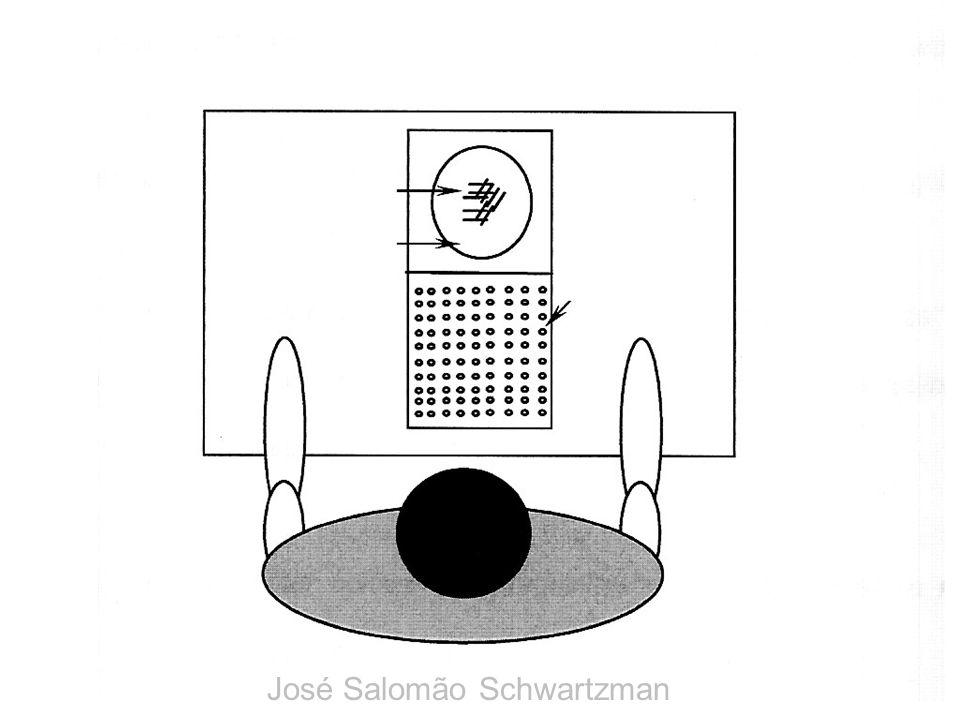 José Salomão Schwartzman