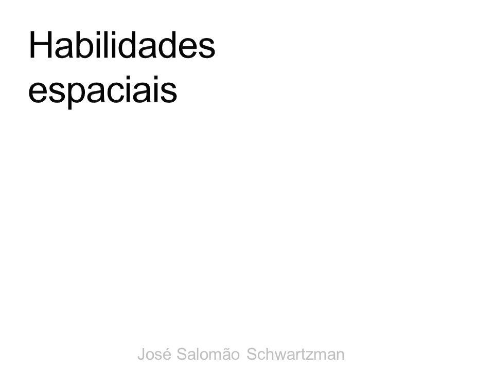 Habilidades espaciais José Salomão Schwartzman